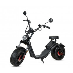 Scooter Eléctrico Caigiees 2.0